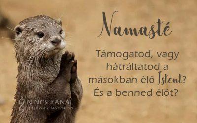 Namasté – a világ formálása a Théta Healing szemszögéből